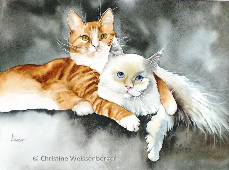 Amour de chats
