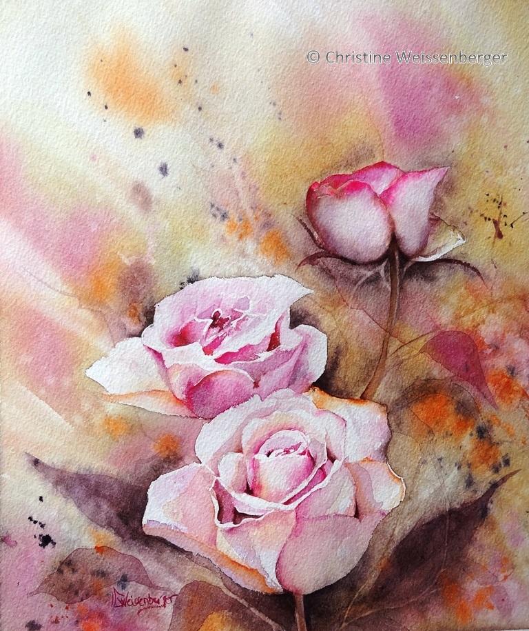 Des roses rose